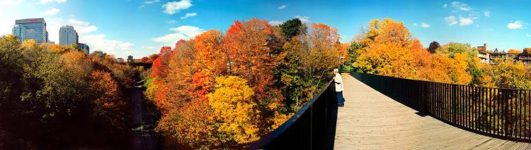Rosedale Valley (credit: Doug Brown, Tourism Toronto)